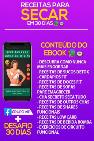 receitas para secar em 30 dias ebook gratuito
