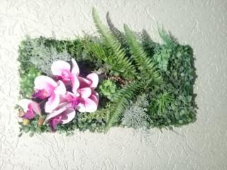 Quadro orquídea rosa