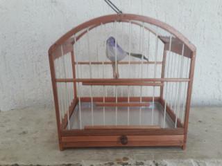 gaiola miniatura em madeira