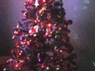 Árvore de Natal enorme...LINDA!!!