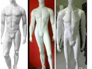 Manequins de fibra masculinos