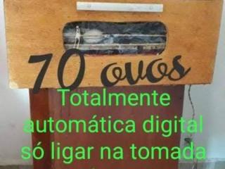 Chocafeira 70 ovos automatica digital