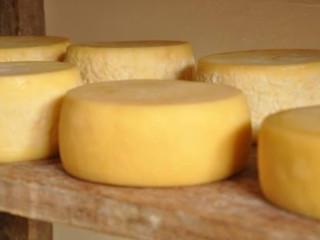 MSBRBRASIL | Queijo Minas, Manteiga da Roça