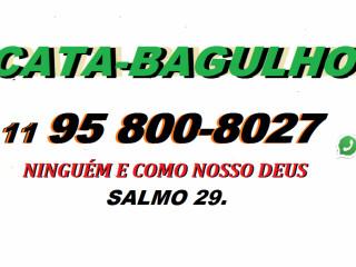 CATA-BAGULHO NO ARTUR ALVIM (JNR)  11 2016-9022