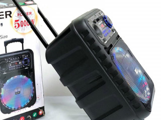 Caixa de Som Amplificada 5000W Bluetooth Microfone S/ fio e Controle