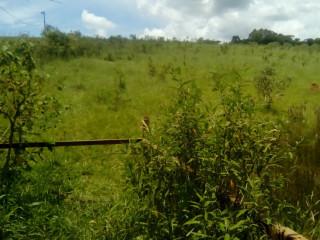 Terreno em Itatiaiuçu